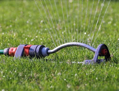 7 Tips for Spring & Summer Time Plumbing